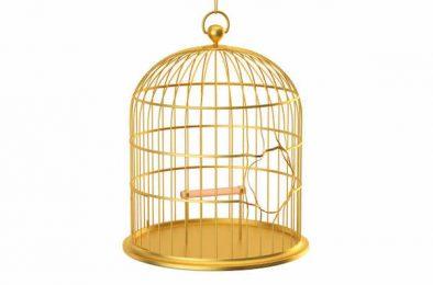 Quand votre culpabilité vous enferme dans une cage dorée !