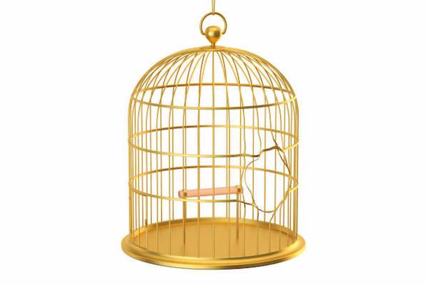 Quand votre culpabilité vous enferme dans une cage dorée!